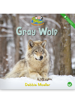 Cover of Childrens Book author Debbie Moeller's work Dash's first snow