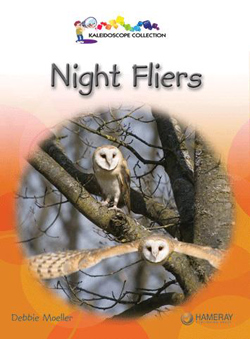 Night Fliers book cover